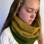 Shannon's Ombre Cowl by Little Monkeys Designs